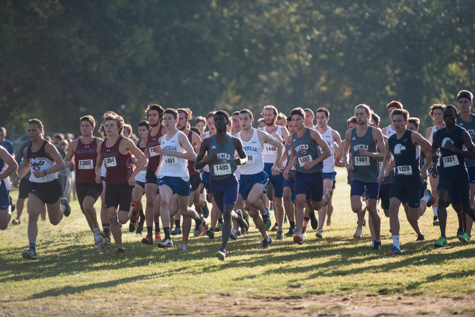 cross country teams efforts - HD1534×1024